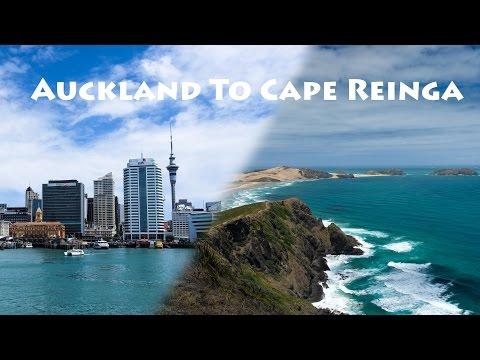 Auckland To Cape Reinga