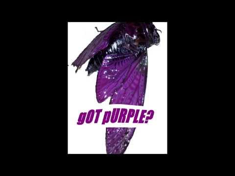 Florida Georgia Line - Cruise (Remix) ft. Nelly PurpleSyrup Remix 33, 34, 35, 37, 40hz