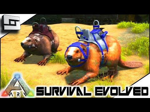 ARK: Survival Evolved - GIANT BEAVER/CASTOROIDES TAMING! S3E53 ( Gameplay )