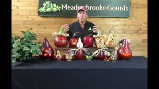 meadowbrooke gourds fall fest create your own 2016