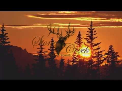 Missouri Deer Hunts | Trophy Elk Hunts