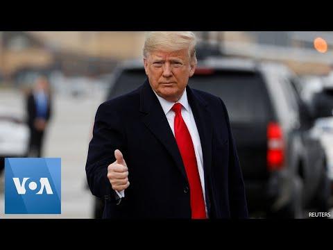 President Trump Heads