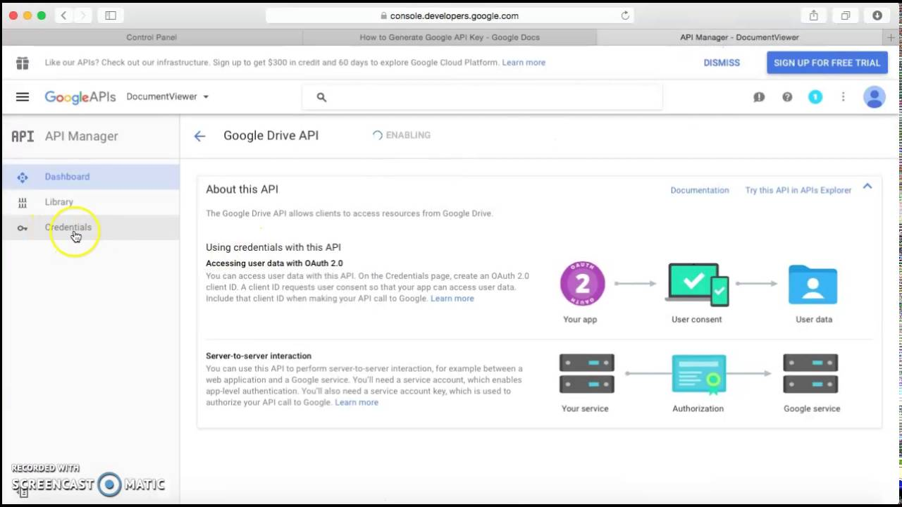 Guidelines for configuring Google Drive API key with Documents Sharing  Plugin - Google Docs Viewer