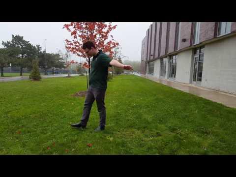 100 Day Shuffling Challenge (Rainy...