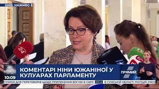 Мораторій і так діє  Южаніна про ініціативу Зеленського заборонити перевірку ФОПів