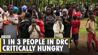 One in three people critically hungry in DR Congo, says UN | World Food Programme report | WION News