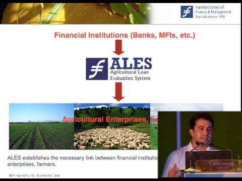 ALES: a Credit Scoring Tool that Helps Banks Mitigate Risk When Making Agricultural Loans