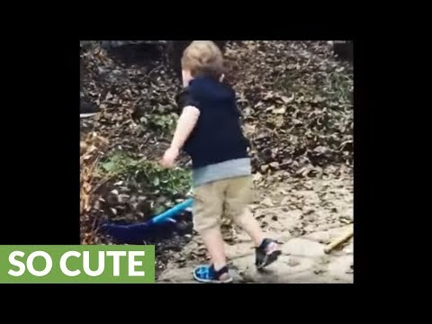 Little boy helps out with the yard chores