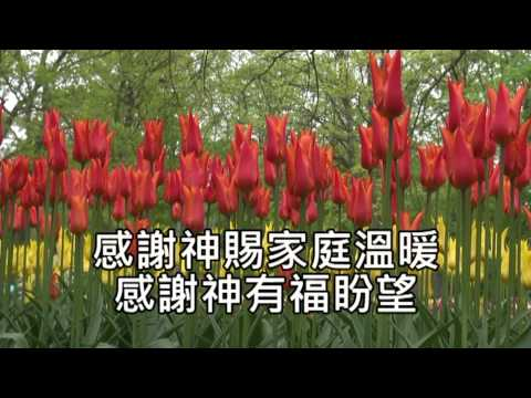 感謝神 - Thanks to God -