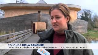 Ouverture du Zoo de Thoiry