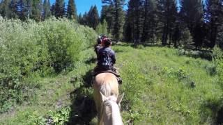 Eagle Ridge Ranch, WY: Horseback Riding, July 2016