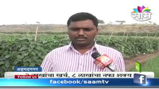 Balasaheb Gunjal39;s cucumber farming success story