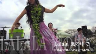 チャンネル第6号は、京成バラ園で開催された ハナコロールライブでのオ...