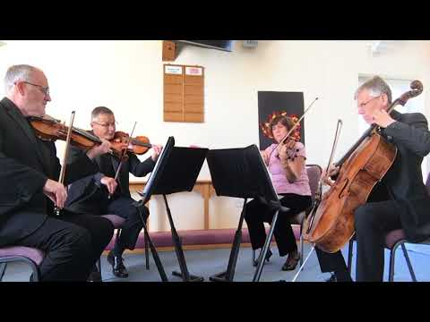String Quartet - Happy Together by The Turtles