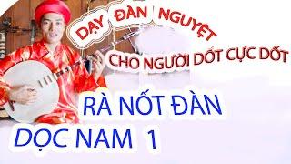 Dạy đàn điệu Dọc Nam QD