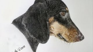 "Speed drawing - My dashs, my love ""Thuca"""