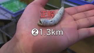群馬の絹産業・富岡 修正版 thumbnail