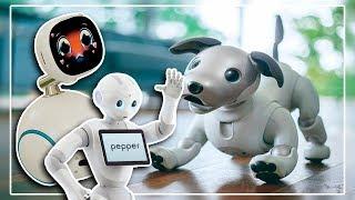 Роботы нового поколения и сколько они стоят. (Life Story)