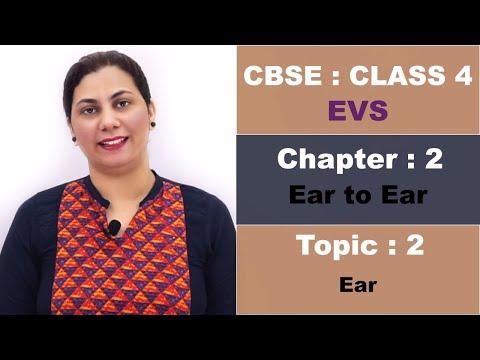 CBSE | Class 4 | Environmental Science | 2 Ear to Ear | Part 2 | Hindi Explanation Video
