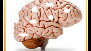 Brain Boosting Foods - The 1 Worst Food that Harms Your Brain