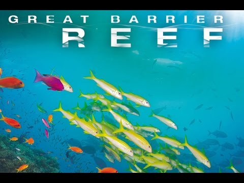 THE GREAT BARRIER REEF - DOCUMENTARY 2016 HISTORY