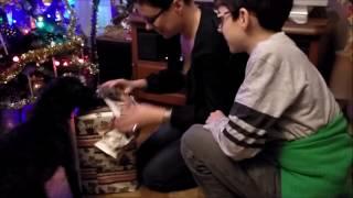 Minka dostaje prezent - Boże Narodzenie 2016