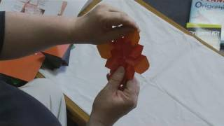How To Create Origami Flowers