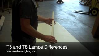 the difference between t5 light bulbs and t8 light bulbs