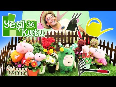 Oddbods oyuncakları. Zee için Nail Baba bahçıvan oluyor! Yeşil kutu 36. Eğitici video