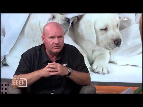 Hundeschweiger/'Auslastung des Hundes'