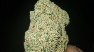 APPLE FRITTER STRAIN(DISPENSARY GRADE)WAKE AND BAKE STYLE