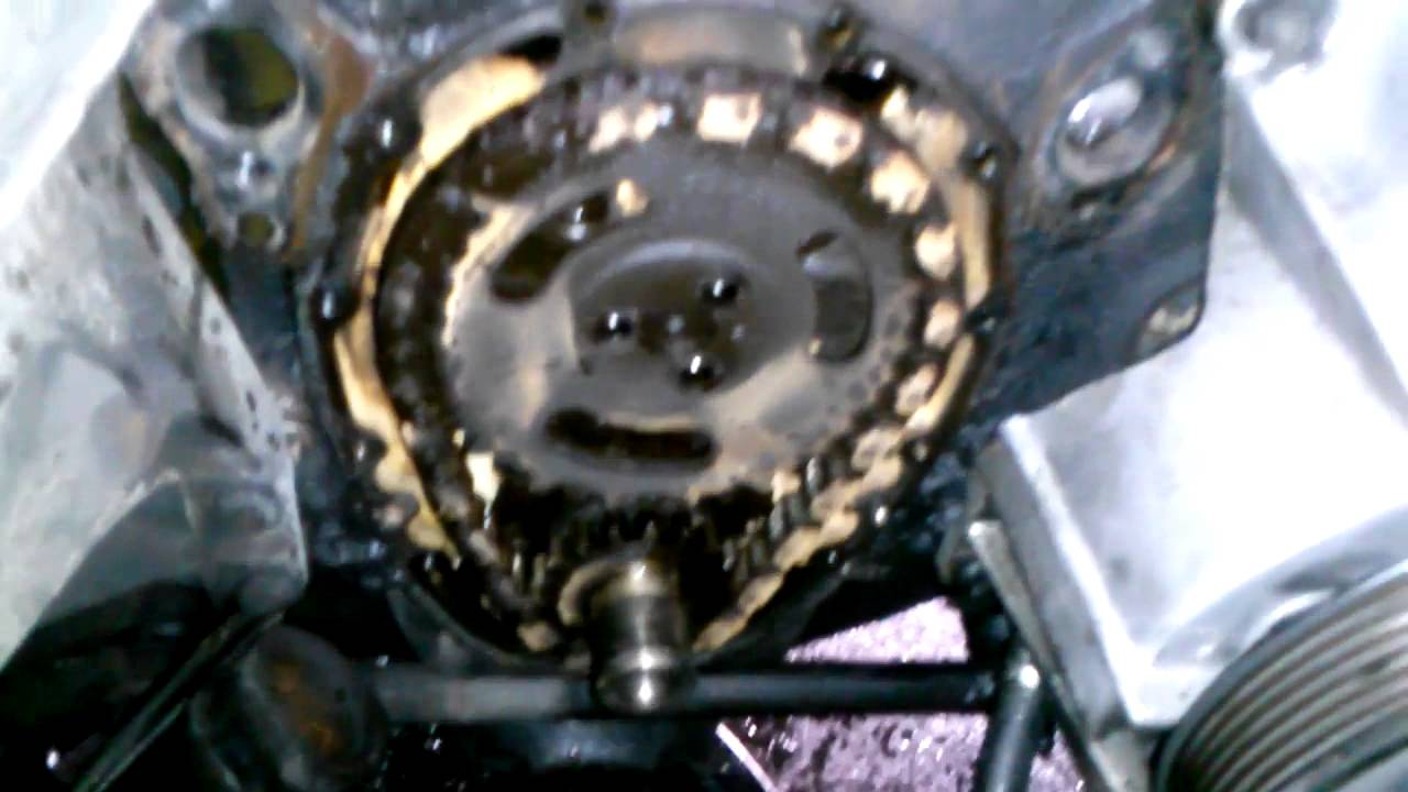 350 Timing chain