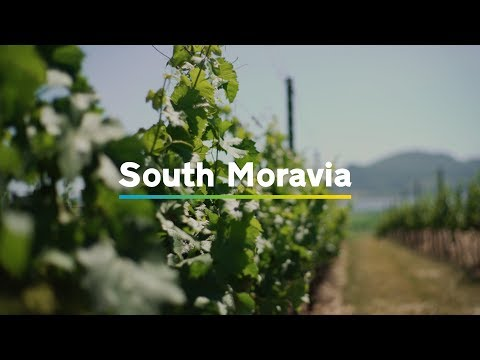 South Moravia in 1 minute