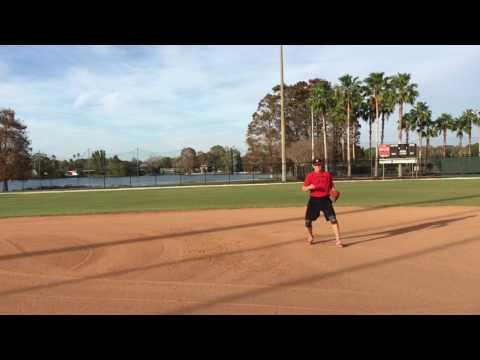 Alex Sexton - 2017 - Dunedin High School Baseball (Dunedin, FL)