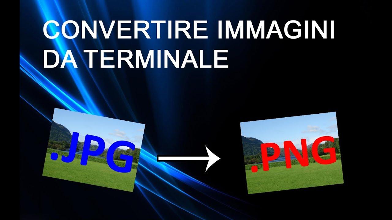 Come Convertire PDF Immagine in Documenti Word