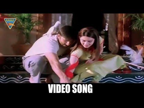 Loha The Iron Man HD Movie Songs || Sukh Dukh Me Video Song || Gopi Chand, Gowri Pandit