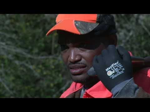 MS Outdoors S27 E09 - Neshoba County Rabbit Hunt, Turcotte Youth Fishing Rodeo
