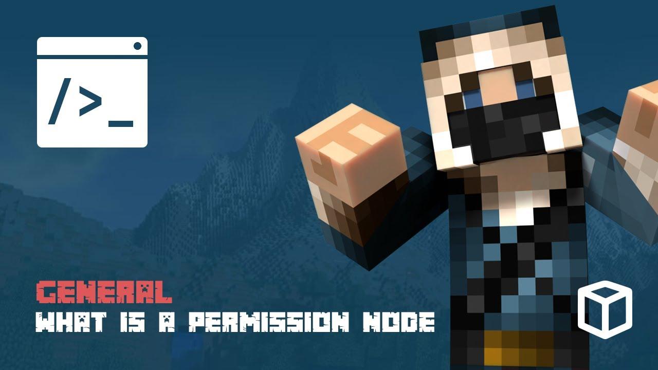 What is a Permission Node?