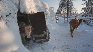 Yakutia, Maldzhagar (ENG SUB)