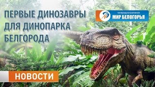 Экспонаты белгородского динопарка