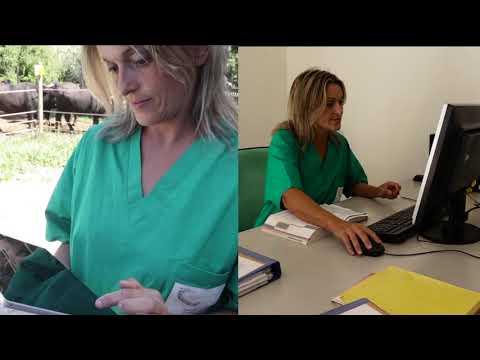 sistema-informativo-nazionale-della-farmacosorveglianza-(ricetta-elettronica-veterinaria)