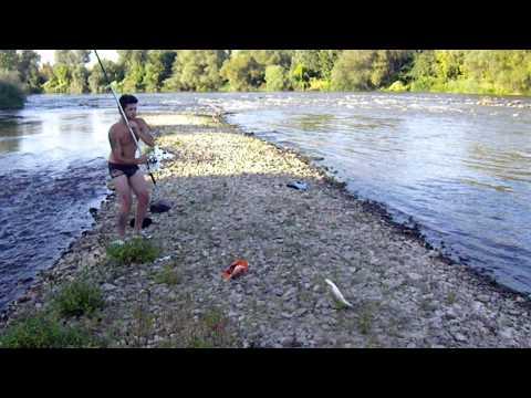 bojnik na reka vardar-kire gajba