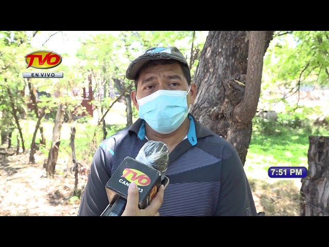 TVO noticias Edición Estelar