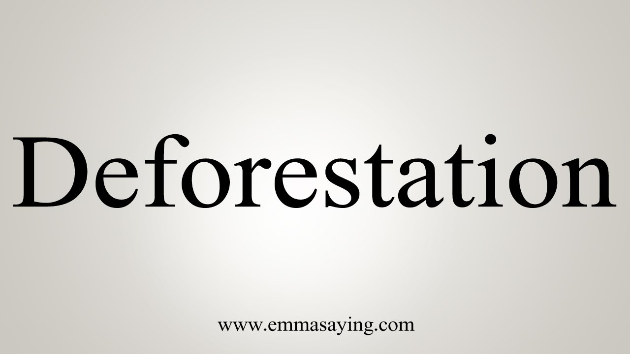 How To Say Deforestation