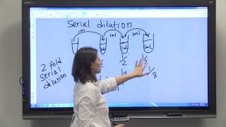 Dilution Series & Serial Dilution