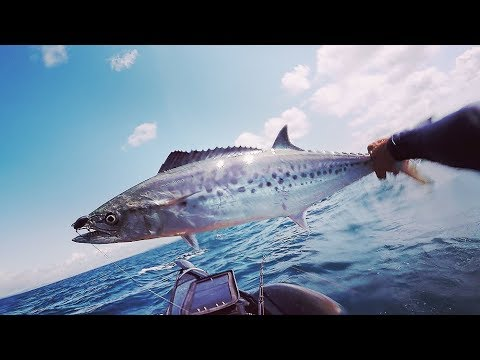 Noosa Offshore Kayak Fishing Tournament 2018
