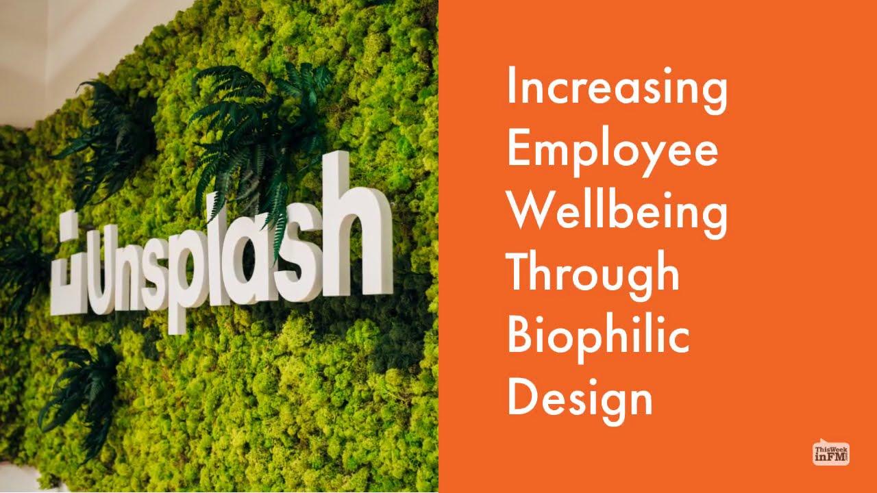Increasing Employee Wellbeing Through Biophilic Design