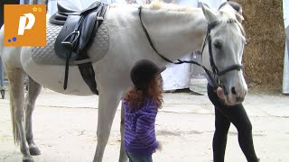 VLOG Катаемся на лошади , верховая езда это моё любимое хобби