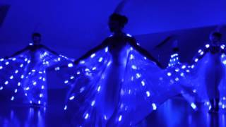 """Light of Dance""/  LED Wings"