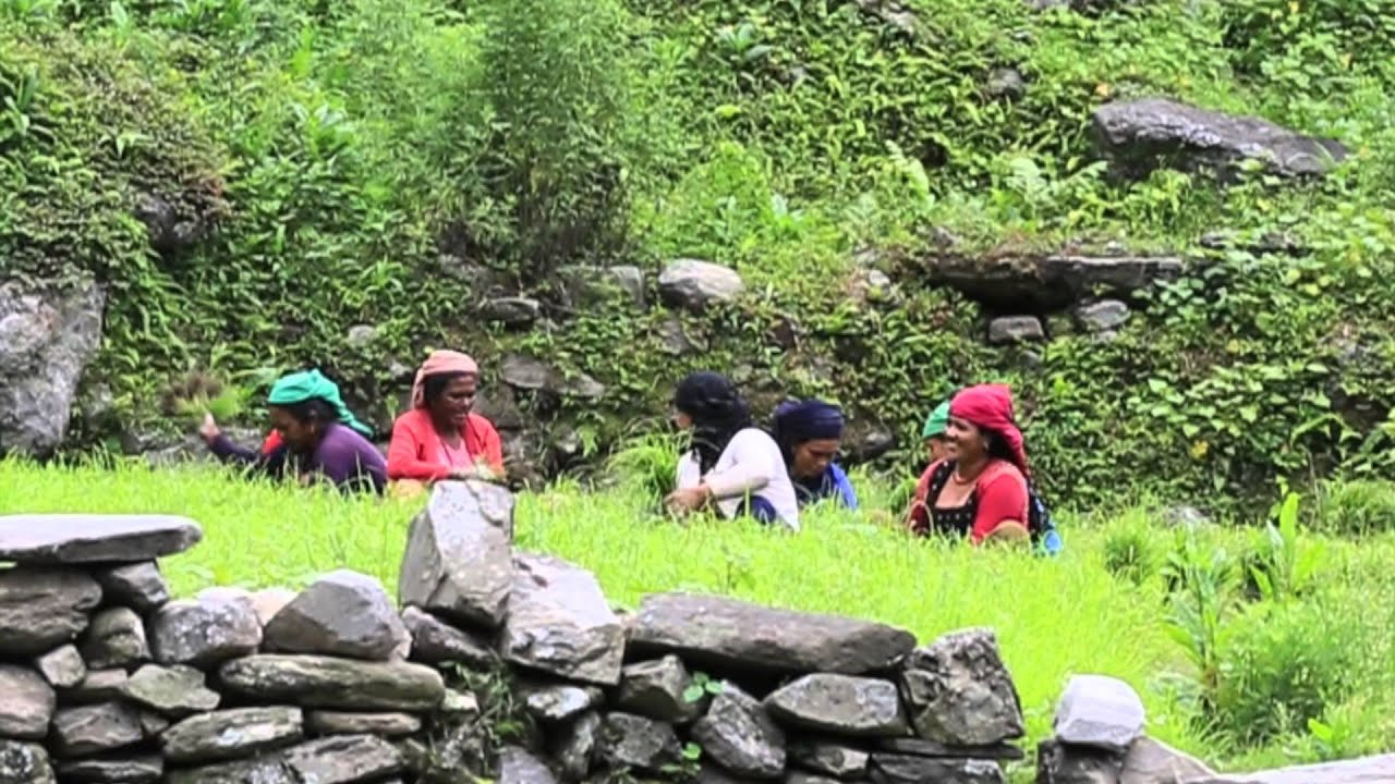 Nepal | Kathmandu, Pokhara, & The Poon Hill Treck